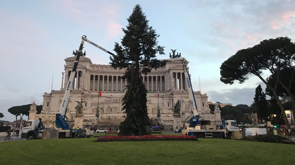 Netflix Sucked into Rome's Hilarious Christmas Tree Debacle (thedailybeast.com)