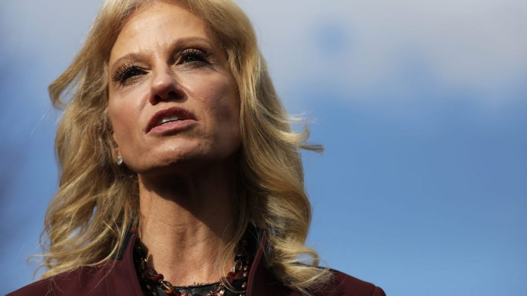 Kellyanne Conway Just 'Disregarded' The Law, Trump-Appointed Watchdog to Testify (thedailybeast.com)
