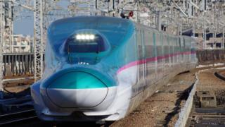 Rogue slug blamed for Japanese railway chaos (bbc.com)