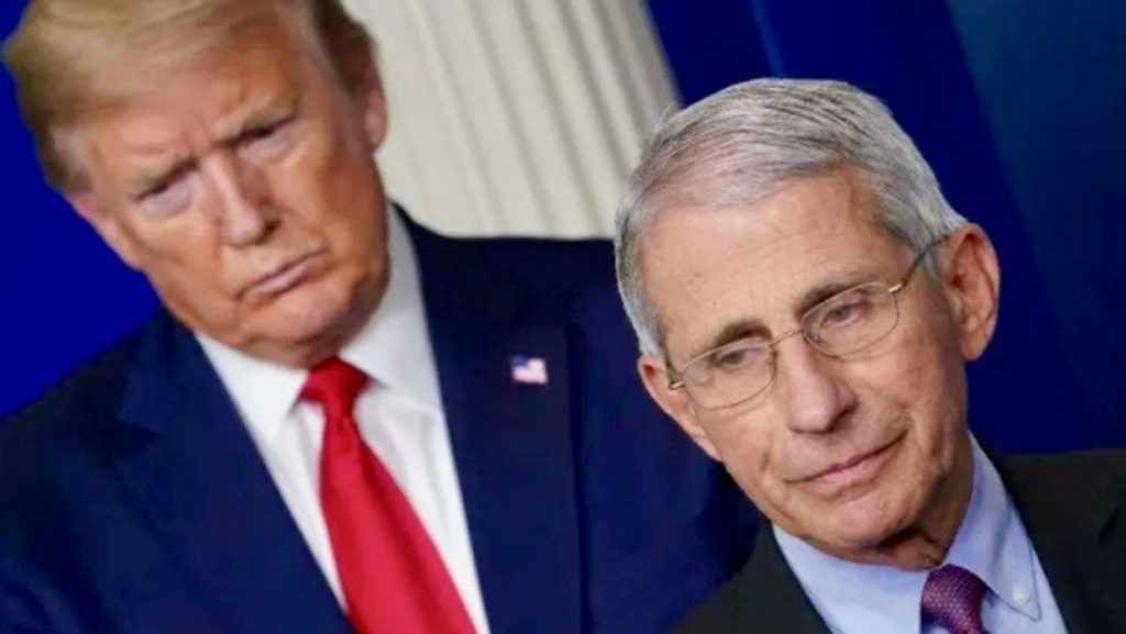 Dr. Anthony Fauci: Donald Trump's lies 'very likely' cost lives (rawstory.com)
